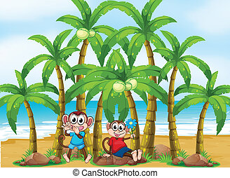 Two monkeys at the beach near the coconut trees