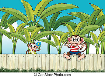 Two monkeys playing at the fence