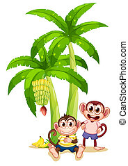 Illustration of the two monkeys under the banana plants on a white background