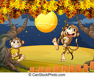 Two monkeys wondering in the middle of the night -...