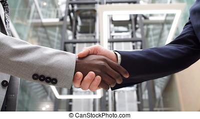 Two Multinational Business People Handshake. Greeting Deal Concept.