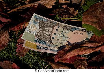 Two Nairaz bills on a leaf background