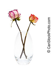two of dried roses
