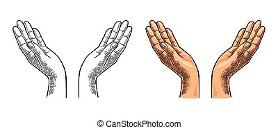 Two open female hands showing protecting gesture. Vector color vintage engraving
