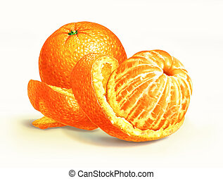 Two oranges isolated on a white surface, with one of them half peeled, with the skin swirling around it. On white background and clipping path included.