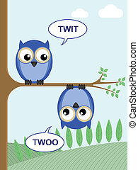 twit twoo  - Two owls calling twit twoo to each other