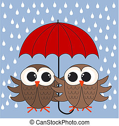 two owls with a umbrella