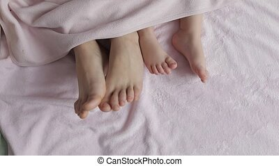 Two pairs of legs of the family in bed under the coverlet -...