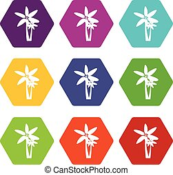 Two palm trees icon set color hexahedron