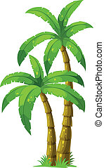 Two palm trees - Illustration of the two palm trees on a...