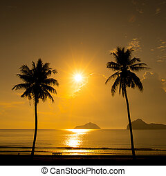 Two palm trees silhouette on sunset tropical beach