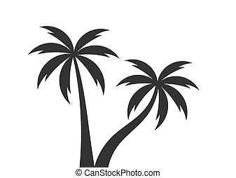 Two palm trees.