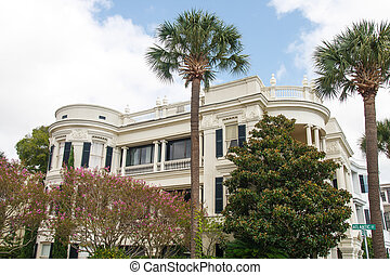 Two Palms and Magnolia at Southern Home