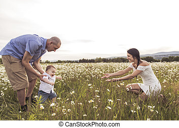 parent walking with her baby son on daisy field at the sunset time