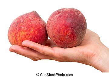 Two peaches on a palm - Two ripe peach on a palm isolated on...