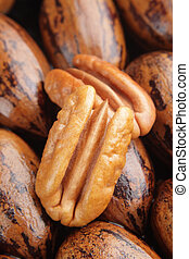 Two pecan halves on background - Pecan halves on a group of ...
