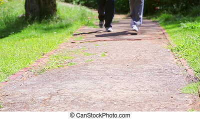 Two people running on a path in a parkland