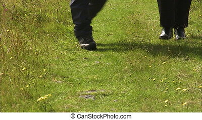 Two people walking on a lawn - A steady close up shot of a...
