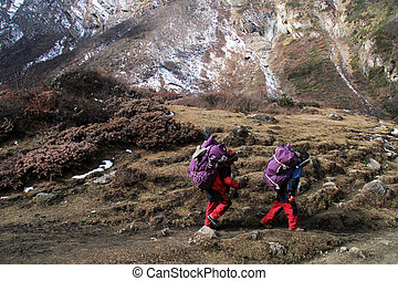 Two porters