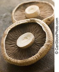 Two Portobello Mushrooms
