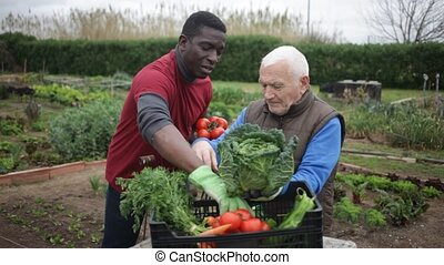 Two positive gardeners talking together near crate with ...