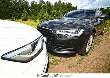 Two prestigious cars on nature