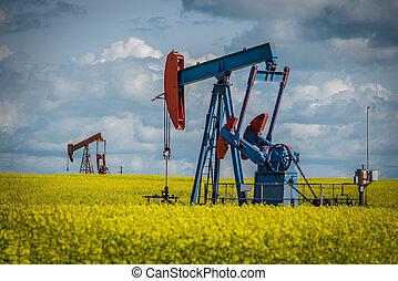 Two pump jacks in a canola field in bloom in Saskatchewan, Canada