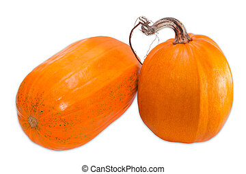 Two pumpkin on a light background