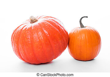 two pumpkins in front of white