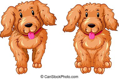 Two puppies with brown fur illustration