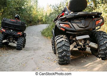 Two quad bike riders rides in forest, back view