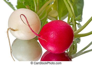 Two radishes  on white