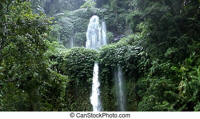 two rain forrest waterfall tilt