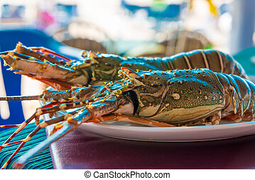 two raw sea lobster on a plate