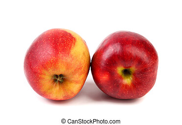 Two red apples are located on a white background