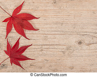 Two red maple leaves at the left border on a white washed scaffolding wooden planks background frame