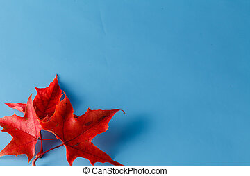 Two red maple leaves, place for inscription