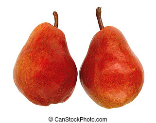 two red pears on a white background