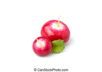 Two red radish fresh with leaves isolated.
