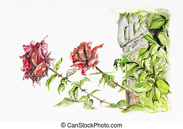 Two red roses grow near the old castle- handmade watercolor...