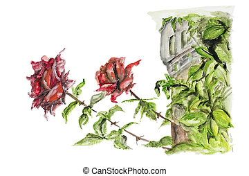 Two red roses grow near the old castle isolated - handmade...