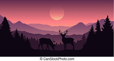 two reindeer in the mountains with forest landscape