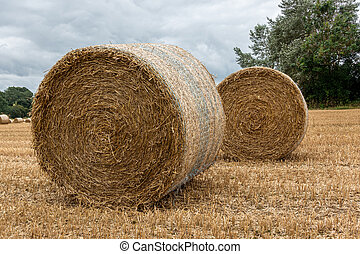 Two rolled up hay bales sitting in a field