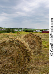 Two rolls of hay close-up, vertical. Rural life, gloomy evening rural landscape. Village in the background