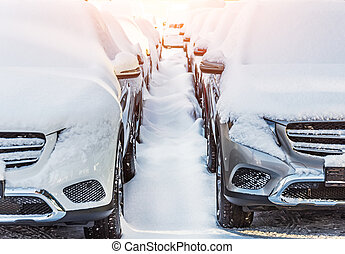 Two rows of cars covered with snow, a path in the snow in winter