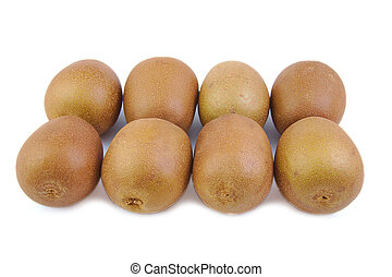 Two rows of fresh and ripe kiwis on white background