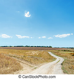 two rural road in hot steppe and blue sky over it