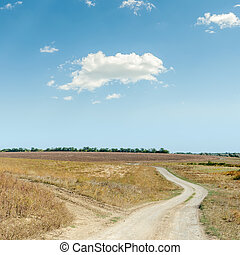 two rural roads in steppe and cloud in blue sky