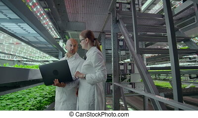Two scientists with a laptop in the hands of men and women discussing the results of biological research on a modern vertical farm.