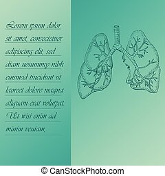 Two Section Poster about Human Lungs